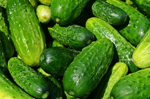 cucumbers-849269__340