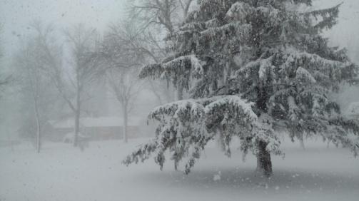 snows1